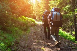 Two men hiking in the woods